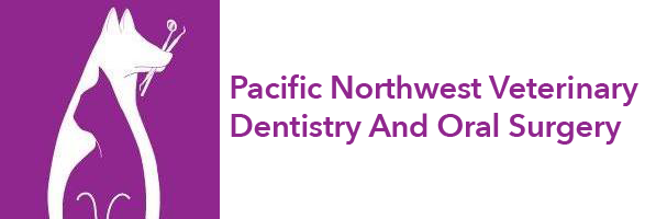Pacific Northwest Veterinary Dentistry and Oral Surgery